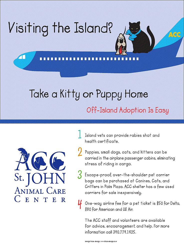 adopt a pet from the Animal Care Center